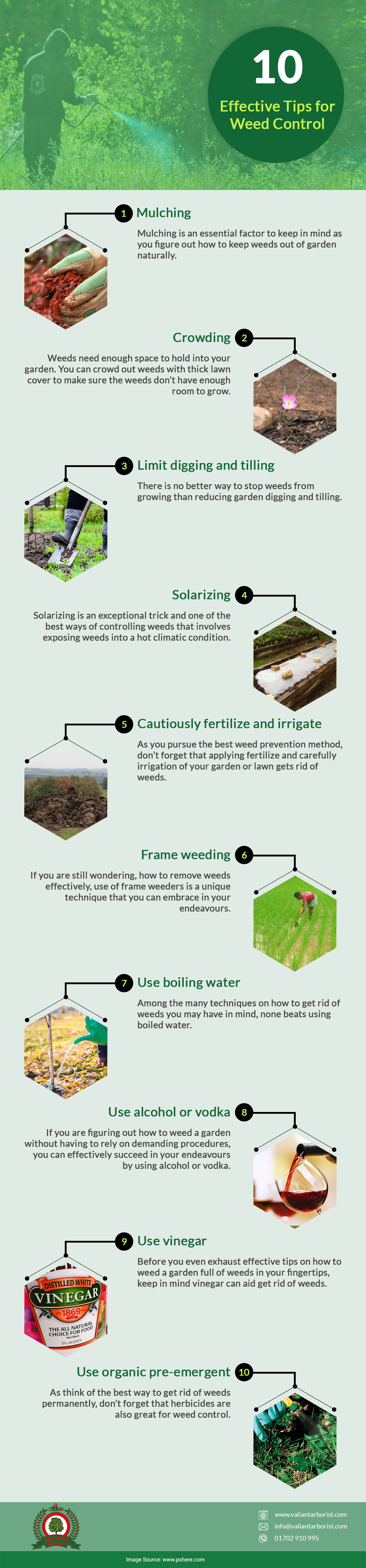 tips for weed control